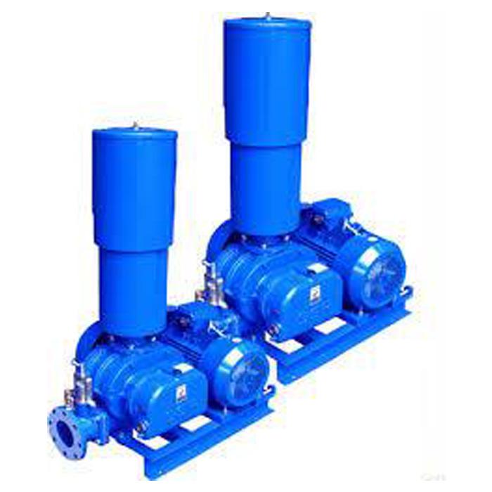 Rotary Lobe Pumps